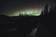 Canada, British Columbia, Liard River Hot Springs Provincial Park, Northern Lights, starry sky at night - GUSF00362