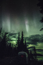 Canada, British Columbia, Boya Lake, Boya Lake Provincial Park, Northern Lights, starry sky at night - GUSF00380