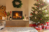 Ambient fireplace and Christmas tree in living room - HOXF01935