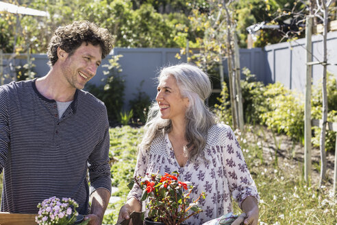 Happy couple carrying potted flowers, gardening in sunny garden - HOXF02304