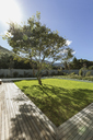 Sunshine casting tree shadow in luxury garden - HOXF02367