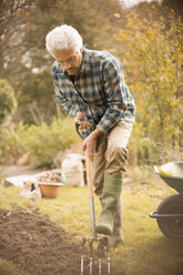 Man gardening digging dirt in autumn garden - HOXF02685