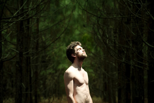Shirtless man with eyes closed standing amidst trees in forest - CAVF00813