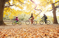 Young family bike riding in autumn park - CAIF05339