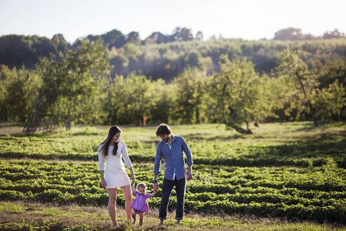Family walking on grassy field - CAVF01289