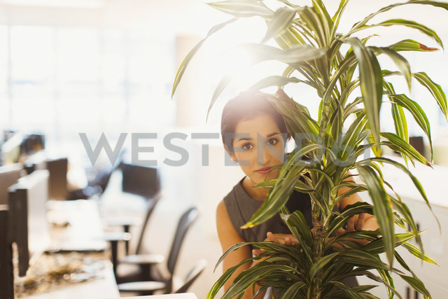 Portrait of businesswoman hiding behind plant in office - CAIF06691 - Paul Bradbury/Westend61