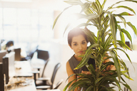 Portrait of businesswoman hiding behind plant in office - CAIF06691
