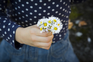 Little girl holding bunch of daisies in her hand, close-up - LVF06767
