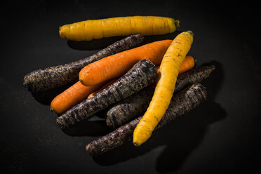 Various sorts of carrots on dark ground - MAEF12541