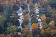 Autumn trees among suburban neighborhood - CAIF07634