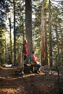 Side view of couple hiking in forest - CAVF01792
