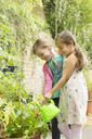 Girls watering plants in garden - CAIF08923
