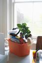 Office belongings in bin on desk - CAIF09025
