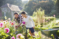 Father and son picking flowers in sunny garden - CAIF09124