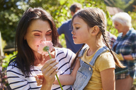 Mother and daughter smelling fresh pink flower in sunny garden - CAIF09139