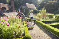 Family gardening in sunny flower garden - CAIF09166