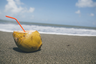 Cuba, Coconut with straw on a beach - GUSF00554