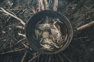 Crabs caught in a pot with water - GUSF00557