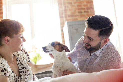 Couple petting Jack Russell Terrier dog on bed - CAIF09704
