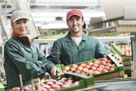 Portrait smiling workers with boxes of red apples in food processing plant - CAIF09959