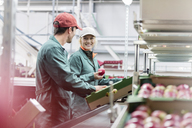 Workers talking and inspecting apples in food processing plant - CAIF09962