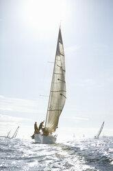 Sailboats on sunny ocean - CAIF10156
