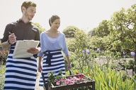 Plant nursery workers with clipboard and wheelbarrow with flowers in sunny garden - CAIF10414