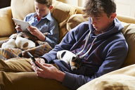 Boys using digital tablet and cell phone with puppies sleeping in laps - CAIF11074