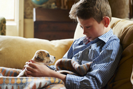 Boy holding puppy in lap on sofa - CAIF11077