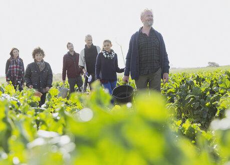 Multi-generation family walking in sunny vegetable garden - CAIF11500
