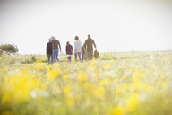 Multi-generation family walking in sunny meadow with wildflowers - CAIF11509