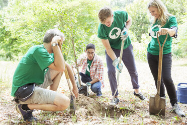 Environmentalist volunteers planting new tree - CAIF11988