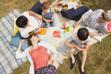 Overhead view multi-generation family enjoying summer picnic - CAIF12225