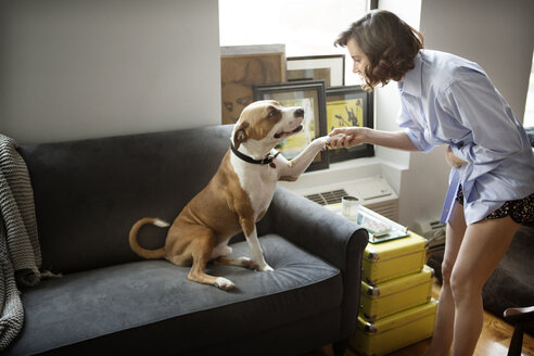 Woman handshaking with dog at home - CAVF05617
