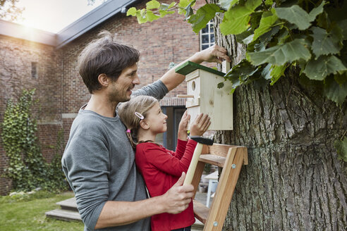 Father and daughter hanging up nest box in garden - RORF01209