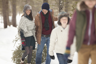 Happy family dragging fresh Christmas tree in snowy woods - CAIF12402