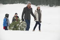 Smiling family dragging fresh Christmas tree in snowy field - CAIF12417