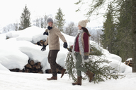Couple dragging fresh Christmas tree near snow covered woodpile - CAIF12420