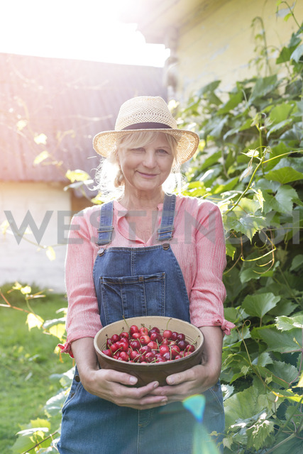 Portrait smiling woman in overalls holding harvested cherries - CAIF13029