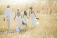 Young couple with bridesmaid and girl walking in meadow - CAIF13533
