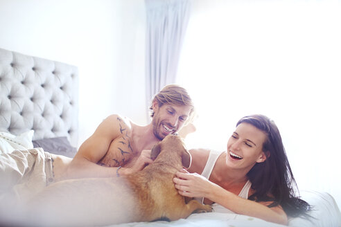 Casual couple petting dog on bed - CAIF14394