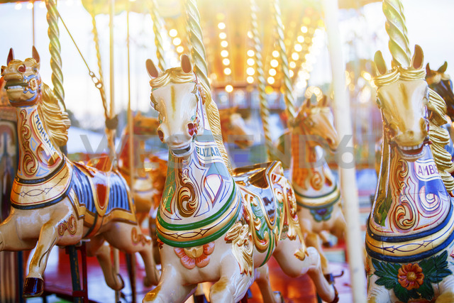 Carousel horses in amusement park - CAIF15051