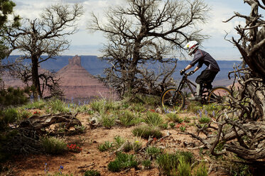 Male athlete cycling in forest - CAVF06214