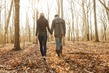 Rear view of couple holding hands while walking in forest - CAVF06361