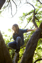 Girl climbing tree in forest - CAVF06787