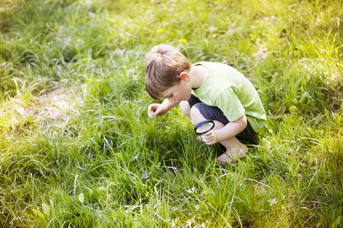 High angle view of boy looking at grass while holding magnifying glass - CAVF07042