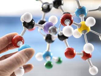 Scientist holding a molecular model - ABRF00124