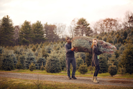 Couple carrying pine tree in net while walking on dirt road - CAVF08347