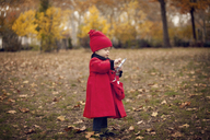 Side view of baby girl using smart phone while standing on field in park - CAVF08383