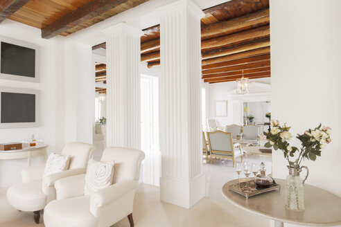 Luxury living room with pillars - CAIF17817